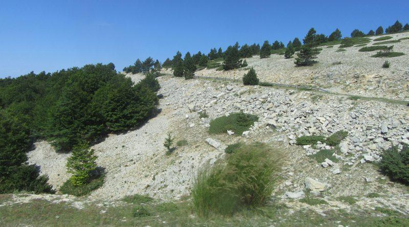 Mont-Ventoux-up-from-Chalet-Renard